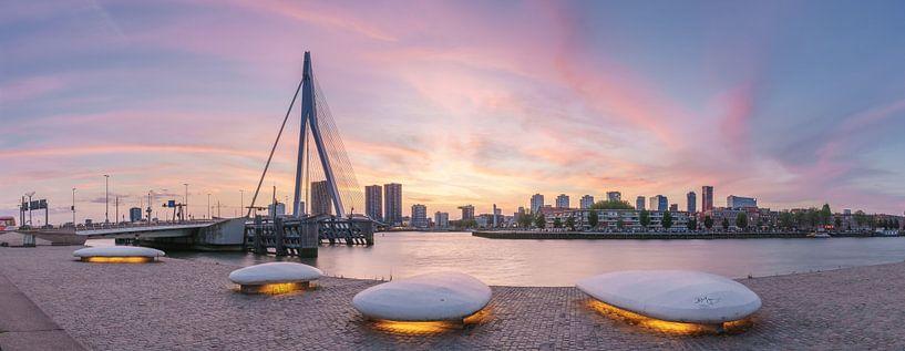 Panorama Erasmusbrug  van Jan Koppelaar