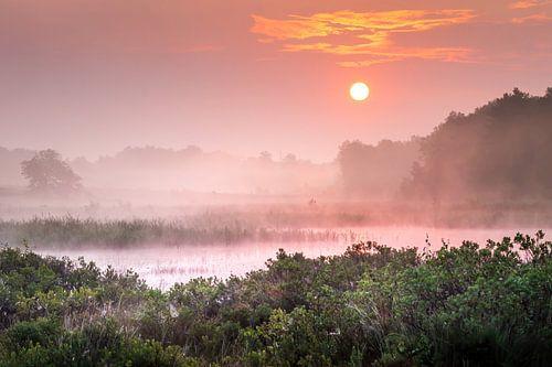 Romantische zonsopgang aan de Teut