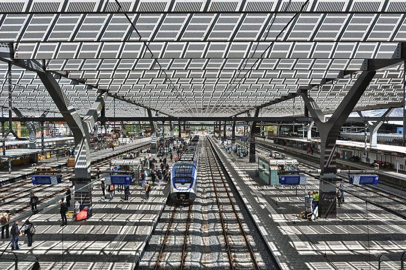 Rotterdam Centraal Station van Esther Seijmonsbergen