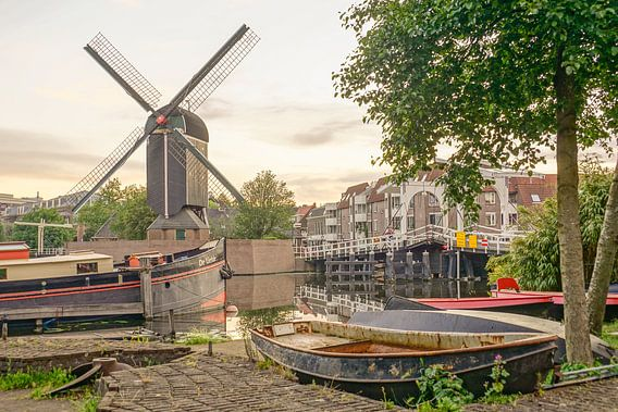 Leiden op zijn mooist van Dirk van Egmond