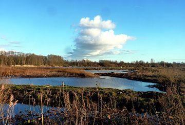 Mooi beeld in de polder von M de Vos