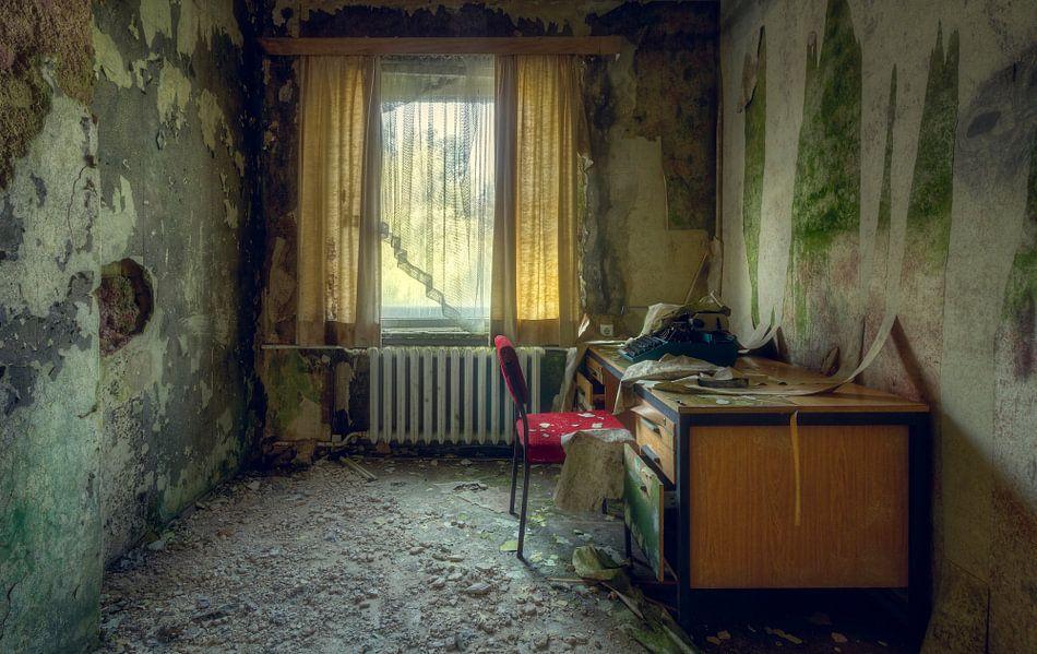 Kamer Vol Schimmel van Roman Robroek op canvas, behang en meer