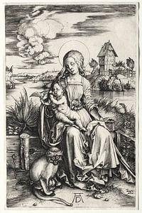 Die heilige Jungfrau mit Kind und Affe, Albrecht Dürer