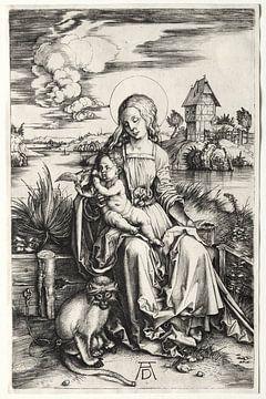 De Heilige Maagd met kind en aap, Albrecht Dürer van De Canon