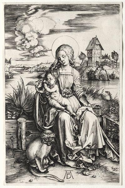 Die heilige Jungfrau mit Kind und Affe, Albrecht Dürer von De Canon