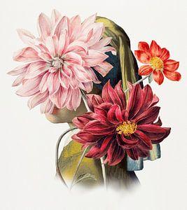 Meisje met de Parel – Behind the Dahlias Edition