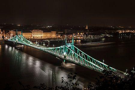 Freedom bridge Budapest von Elspeth Jong