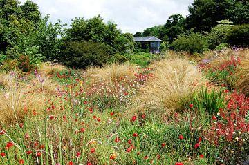 Tuin in Engeland von Susan Dekker