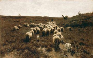 Rückkehr der Herde, Anton Mauve