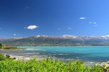 Prachtig panorama uitzicht Kaikoura - Nieuw-Zeeland van Bianca Bianca