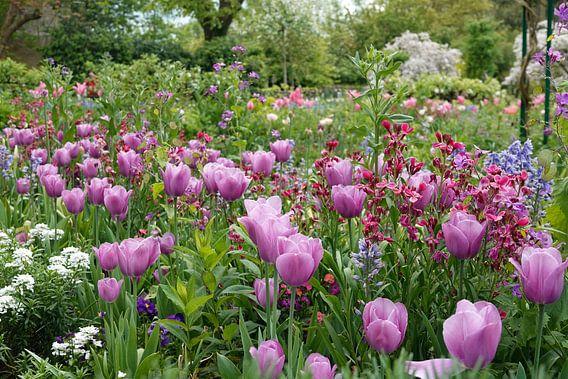 Tulpenpracht in de tuin van Monet van Aagje de Jong