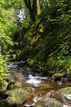 Waterval in de Trossachs van Johan Zwarthoed