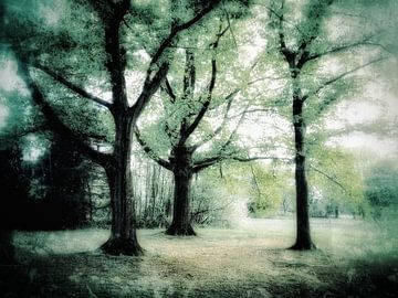 Bomen in zacht groen van Elo Mars