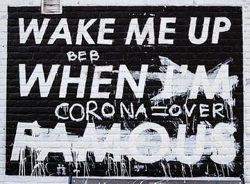 Wake me up when I'm famous muurschildering in Amsterdam van Teun Janssen