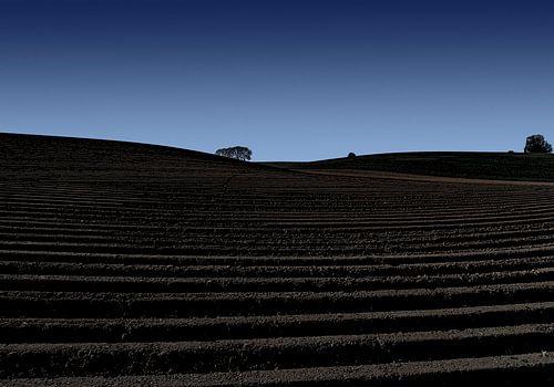 aardappelland van