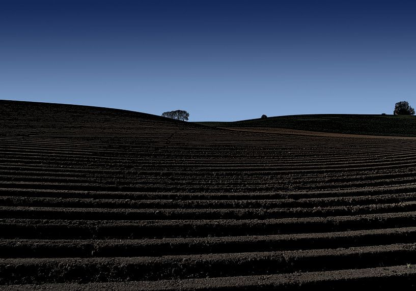 aardappelland von Henk Speksnijder