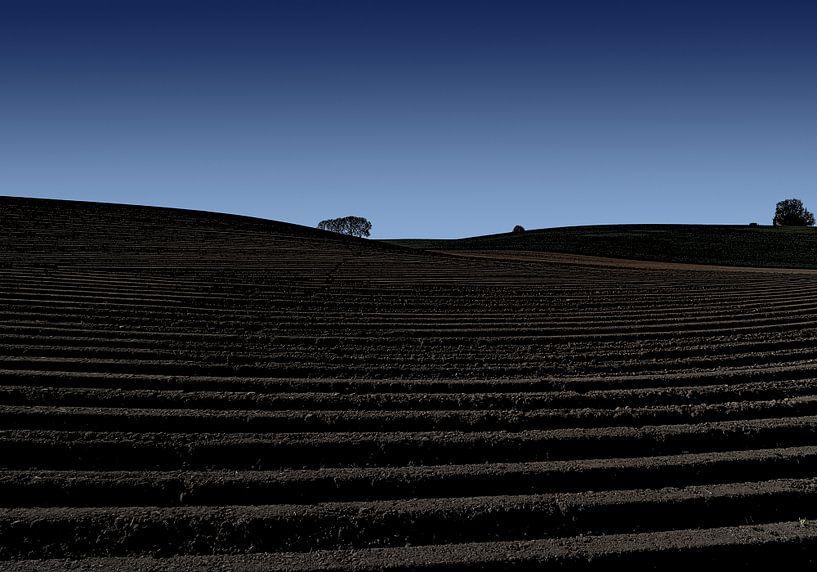 aardappelland van Henk Speksnijder
