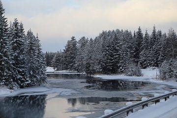 Scandinavisch winterlandschap von Carin van der Aa