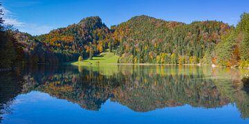Herfst aan de Alatsee van Walter G. Allgöwer