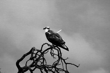 Vish hawk in oil Paint (visarend) von Loraine van der Sande