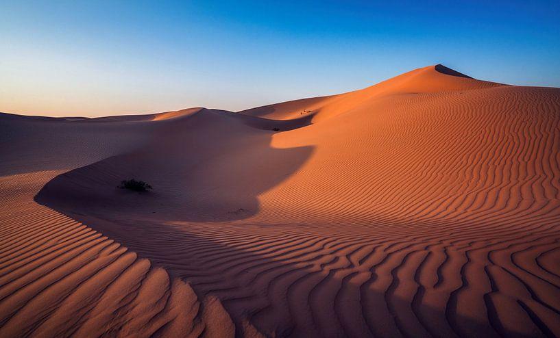 Woestijn van Photo Wall Decoration