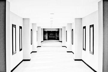 Un monde en noir et blanc sur Norbert Sülzner