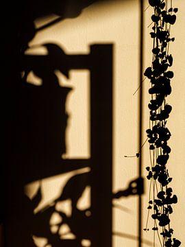 Die Schatten des Großstadtdschungels von Rik Pijnenburg