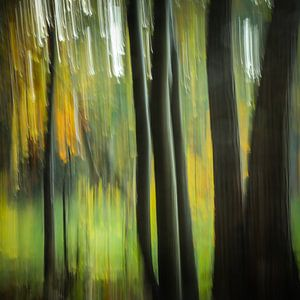 Bos in vertical blur (vierkant) van