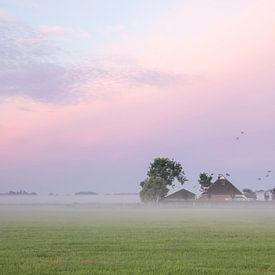 les oiseaux survolent la ferme à l'aube sur Olha Rohulya