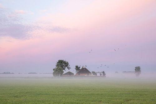 vogels vliegen over boerderij bij dageraad