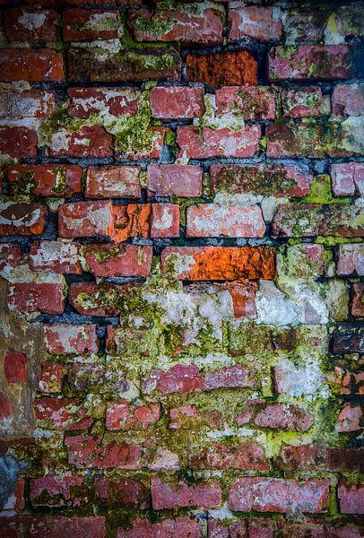 The Wall van B Tindal