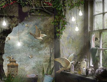 Licht (1) von Iet Wouda
