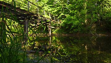 Alter Steg an einer Mühle am Fluss Saalein Halle Saale in Deutschland von Babetts Bildergalerie