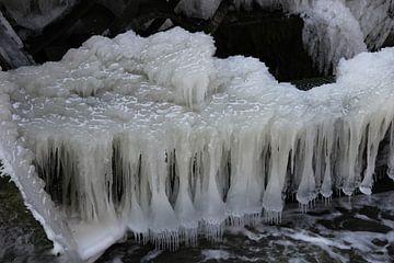 ijs van