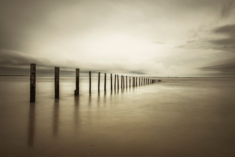 Palen in zee op het strand in sepia van Sjoerd van der Wal