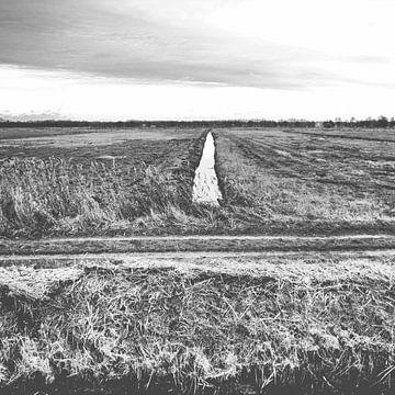 Grafisch Landschap von Marion Kraus