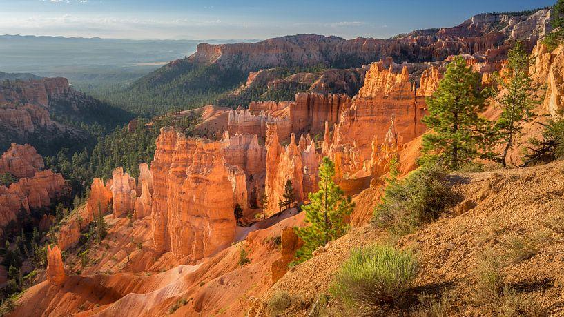 Bryce Canyon National Park van Edwin Mooijaart