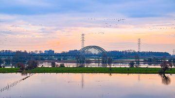 Hoogwater Rijn met Spoorbrug Oosterbeek op de achtergrond van Sharon Hendriks