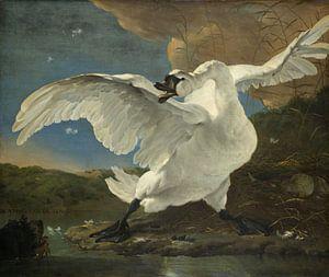 De bedreigde zwaan, Jan Asselijn van