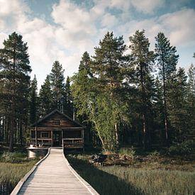 Cabin goals van Kimberley Jekel