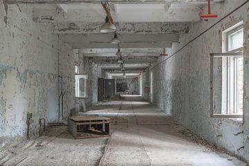 Gang Doega -3 Tschernobyl von John Noppen