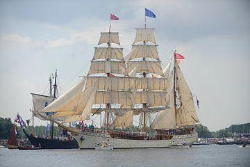 Tallship De Europa bij de parade van SAIL Amsterdam 2015 sur Merijn van der Vliet