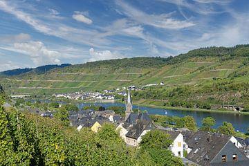 Village viticole de Sankt Aldegund an der Mosel