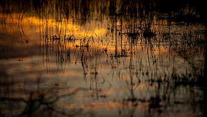 sprietjes rit in het water, tijdens het moment van zonsopkomst