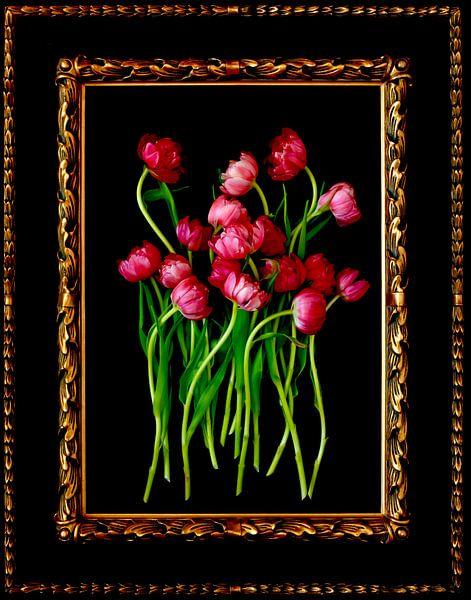 Stillleben mit Tulpen von Thomas Jäger