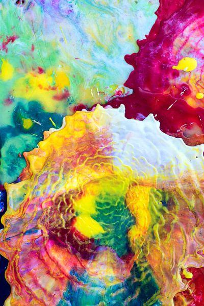 Kleurexplosie van angelique van Riet