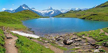 Wandelbestemming Bachalpsee vanuit Grindelwald Eerste, Berner Alpenn van Susanne Bauernfeind