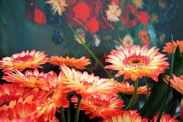 Gerbera's tegen achtergrond kopie schilderij van Vincent van Gogh van Albert van Dijk