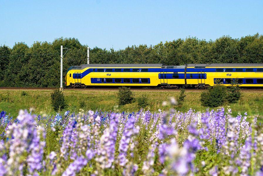 Nederlandse Spoorwegen trein raast voorbij van Nationale Beeldbank