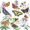 Wilde planten en haar vlinders van Jasper de Ruiter thumbnail